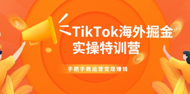 TikTok海外掘金实操特训营:手把手教运营变现赚钱【视频课程】