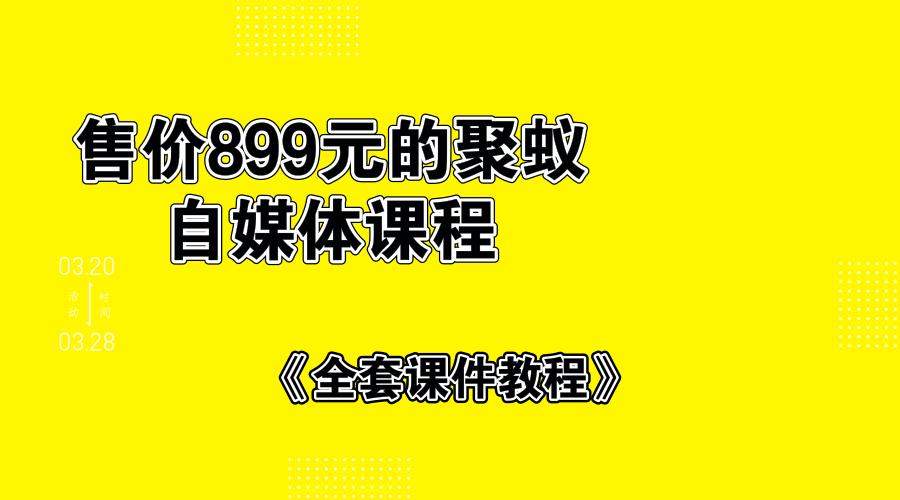 售价899的聚蚁自媒体课程半原创短视频玩法,单号月入20000元插图