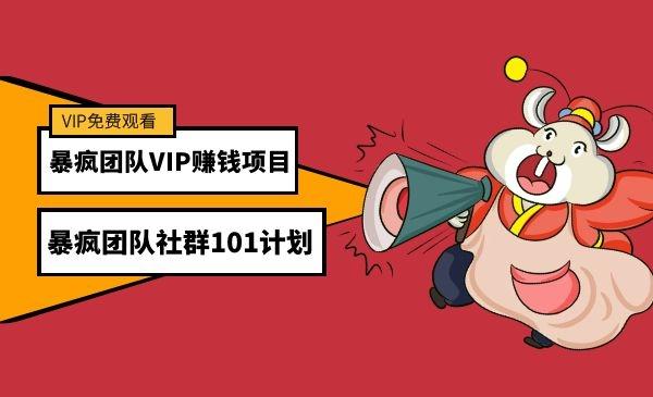 暴疯团队VIP赚钱项目之(暴疯团队社群101计划)插图