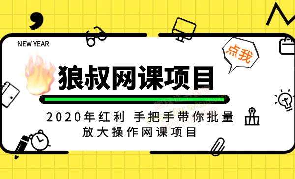 【狼叔网课项目】2020年红利 手把手带你批量放大操作网课项目插图