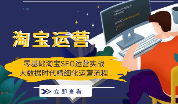 2020年零基础淘宝SEO运营实战,大数据时代精细化运营流程插图