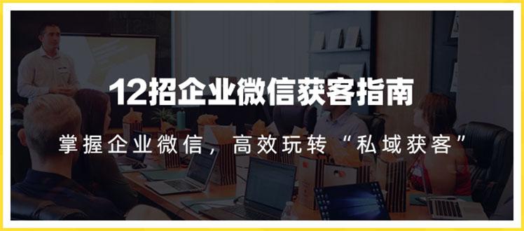 12招企业微信获客指南:链接11亿微信用户,提前把握企业新机遇(无水印)插图